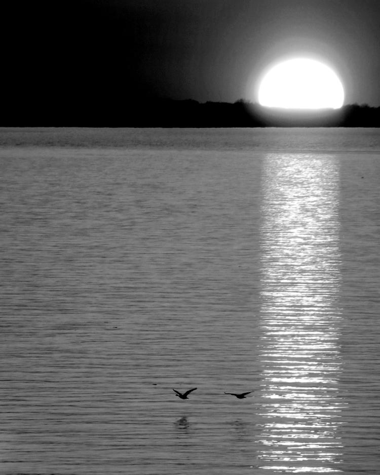Dotting Rocky River Park Lake E - kenlong | ello