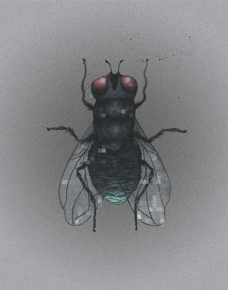 Digital fly - illustration, handdrawn - heyinstigator | ello