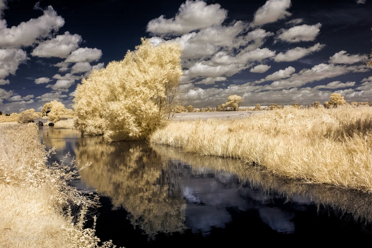 Canal IR - infrared, landscape, unreal - toni_ertl | ello