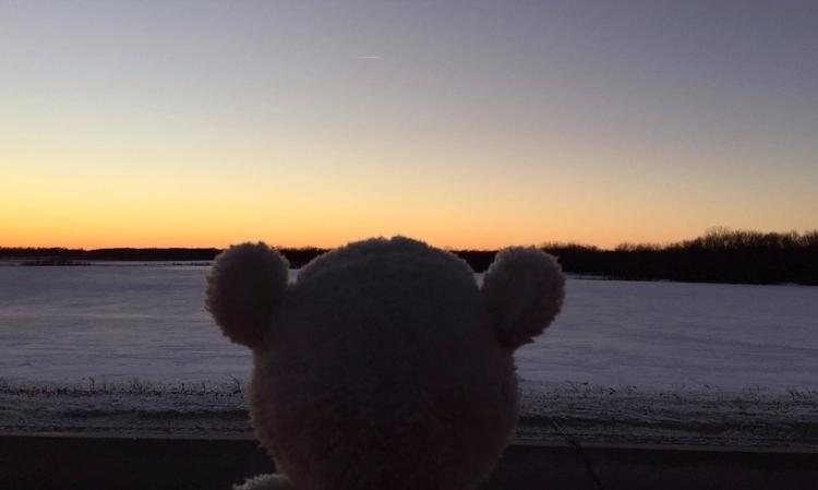 teddylonglegs, photography, sunset - teddylonglegs | ello