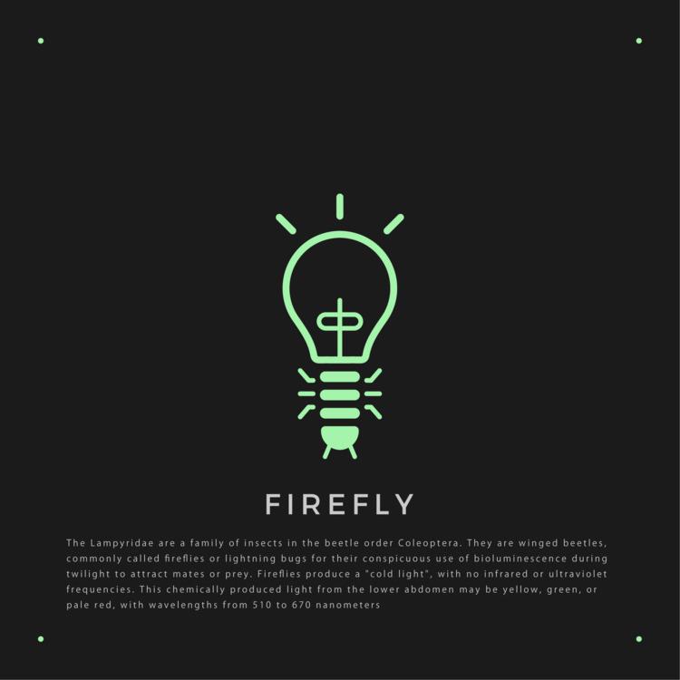 蛍 - FIREFLY - logo, design, insect - falcema | ello