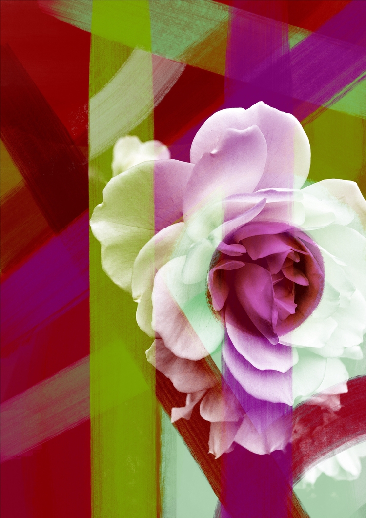 modern, digitalprint, flowerart - chrissyink | ello