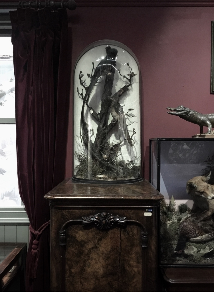 Victorian parlour Booth museum  - blackwyrt | ello