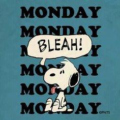 feeling, Monday?, MondayMotivations - hallicj   ello