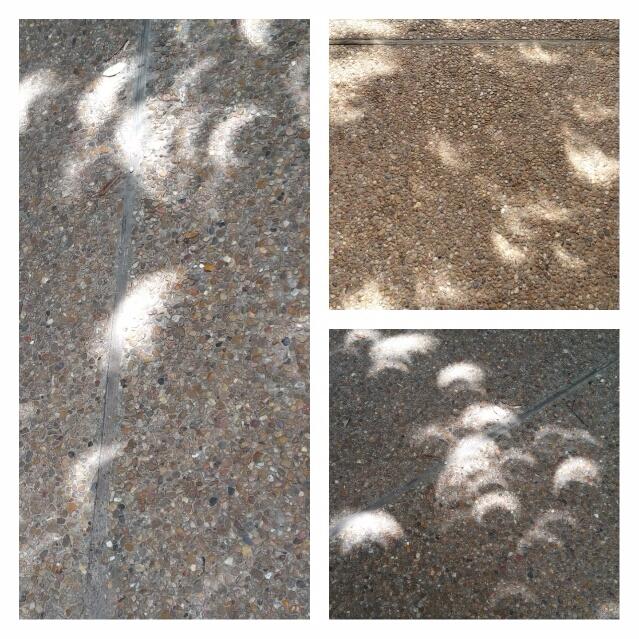 crescent-shaped shadows partial - codenamesarah | ello