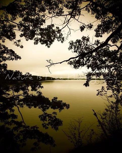 Mother Nature speaking. speaks  - natureisfree | ello