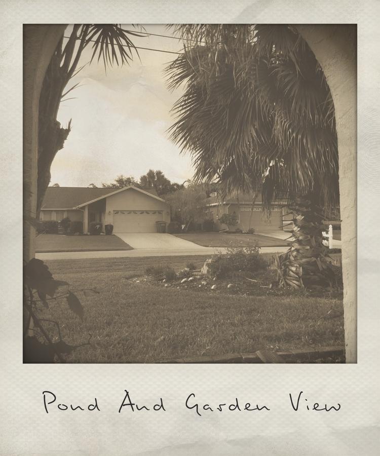 Pond Garden View Apps - mikefl99 - mikefl99 | ello