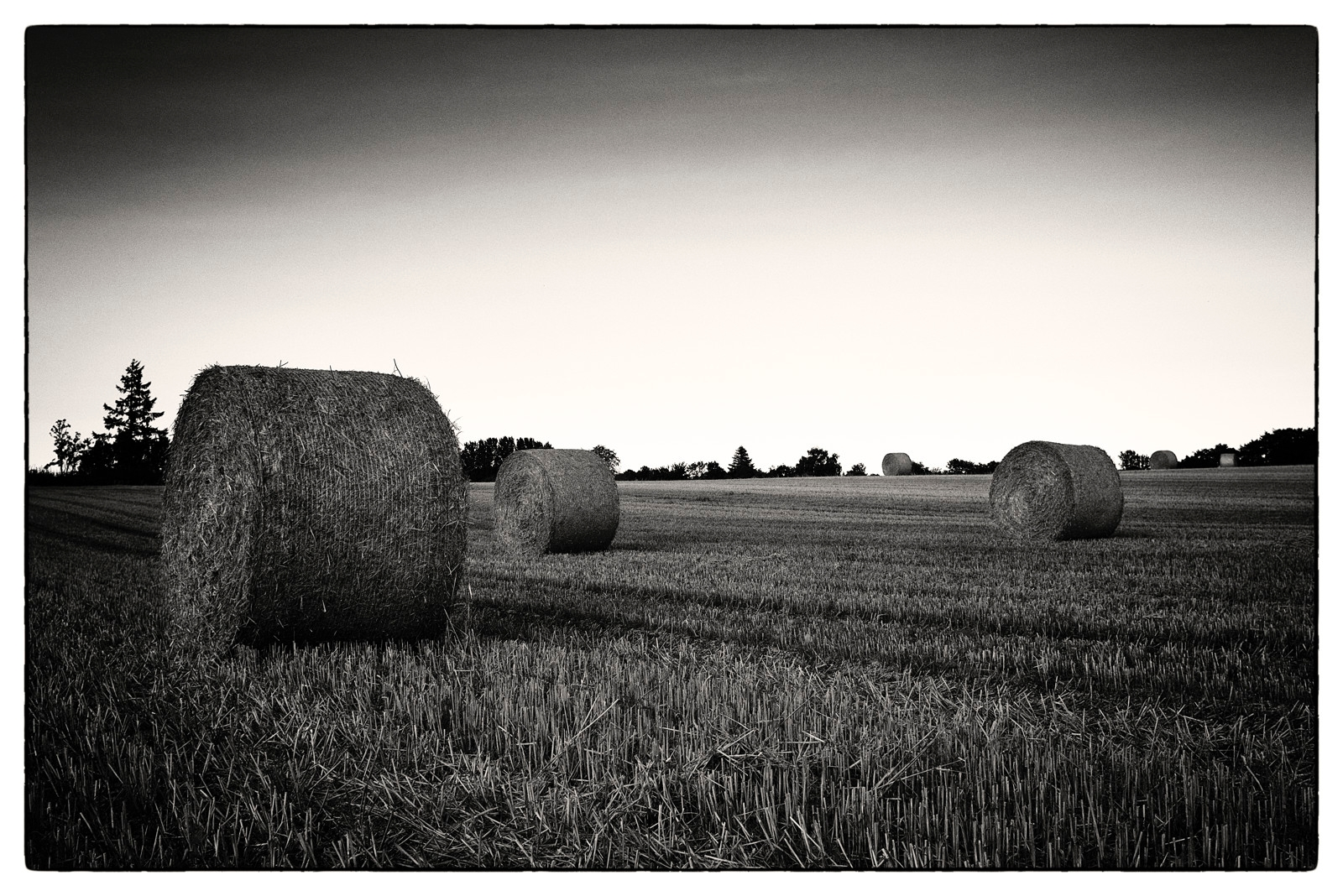 Landscape - PentaxK3II, bw, blackandwhite - sselvejer | ello