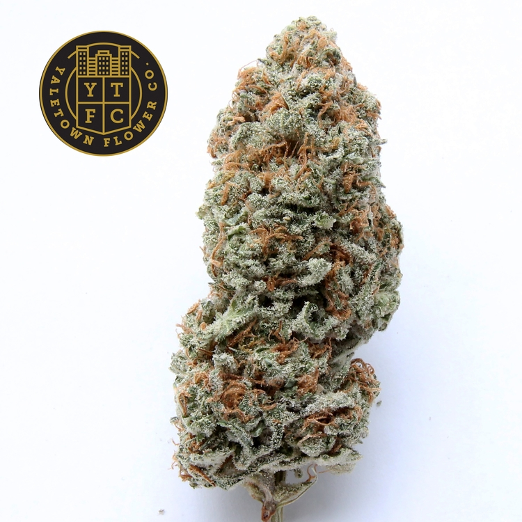 Sour Tangie Yaletown Flower Co - greenz | ello