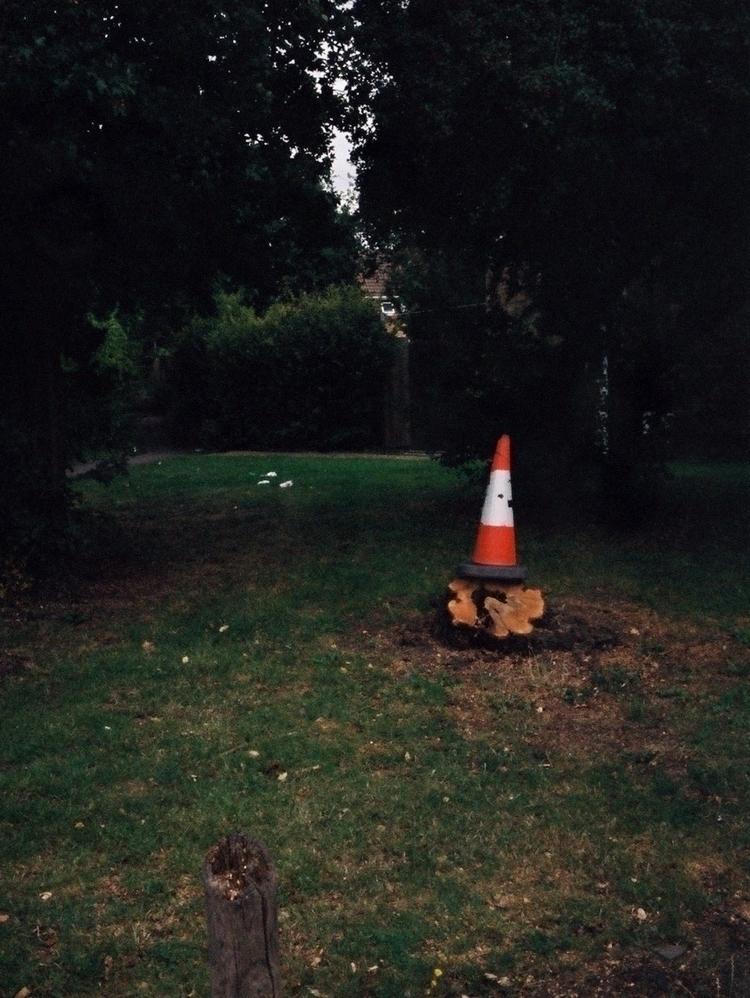 Cone stump - Olympus Pen Agfa V - paulbines | ello