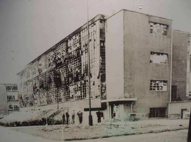 forced 1933 due pressure ideas  - bauhaus-movement | ello