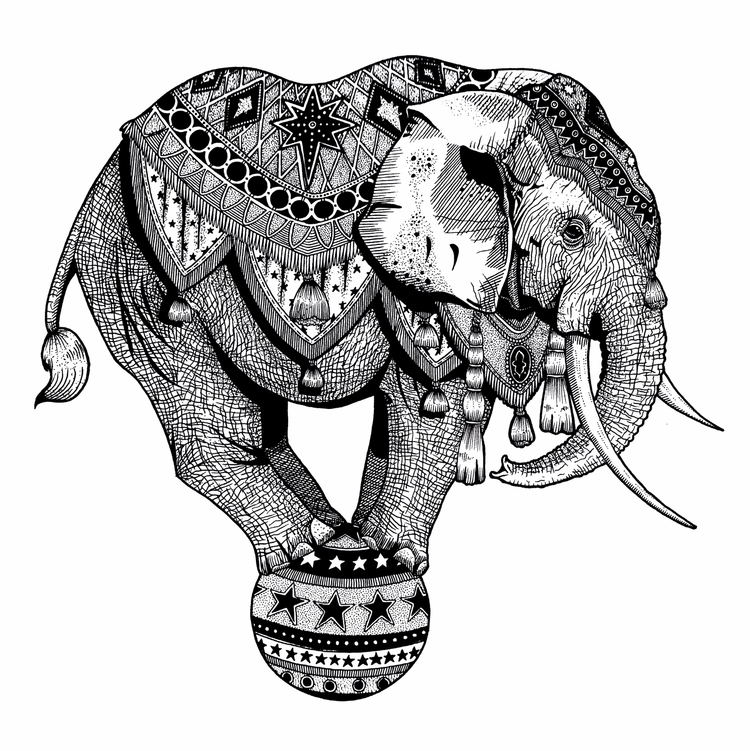 Amber Anderson freelance illust - creativedebuts | ello