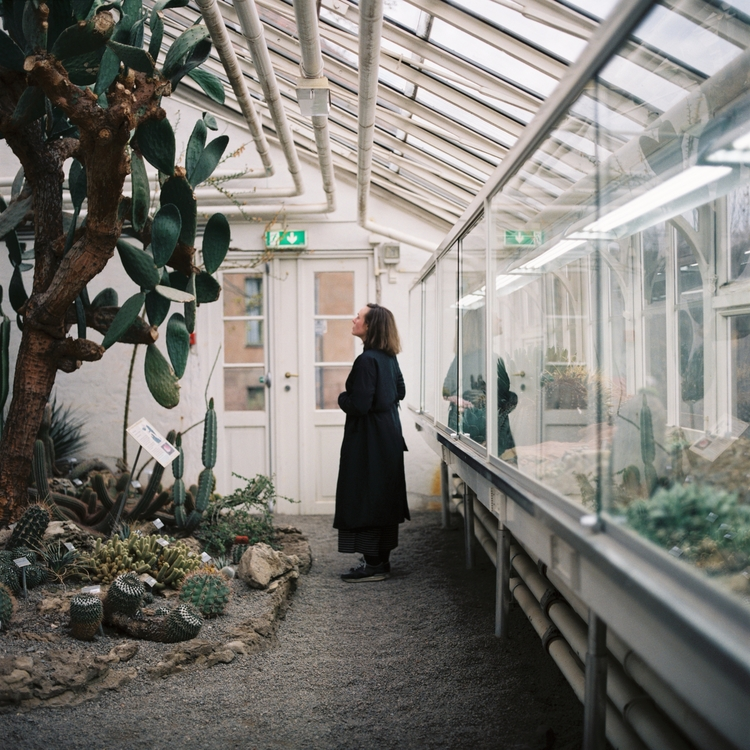 Oslo botanical gardens - snapshot - nickcounts | ello