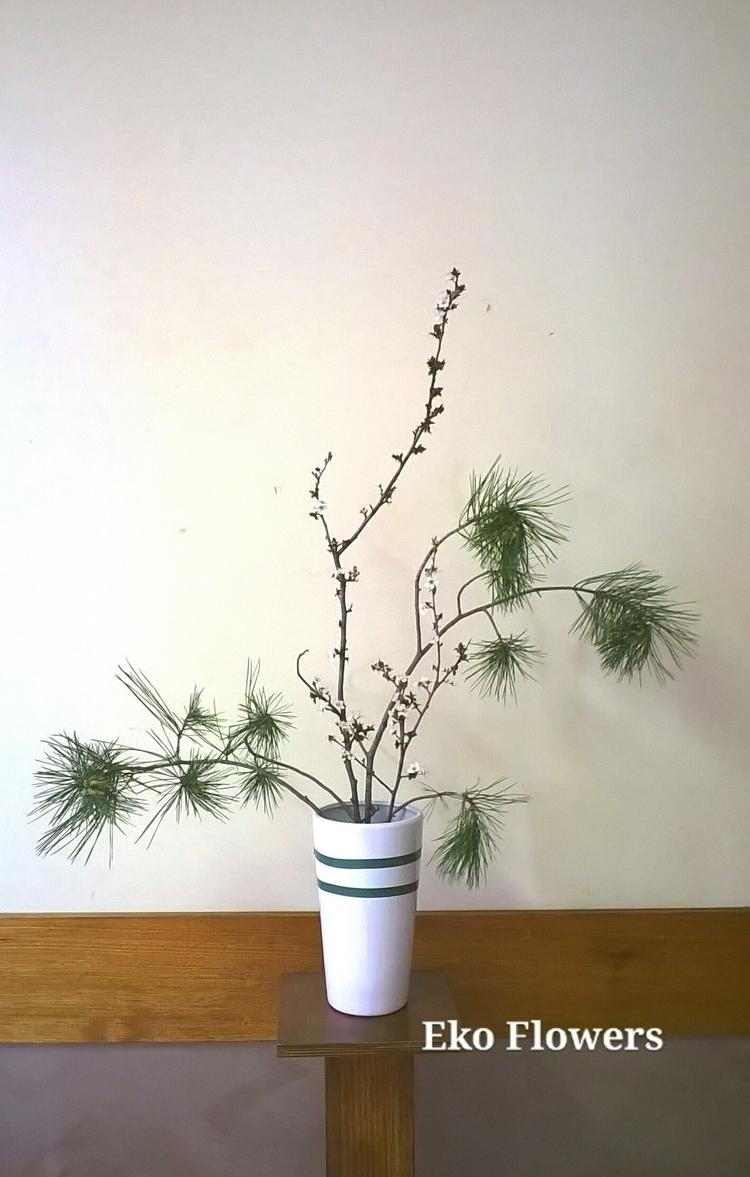 Simplicity - ikebana - ekoflowers | ello