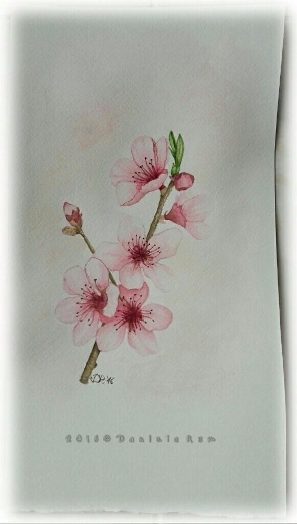 Illustration 15x30 Watercolor A - daniela_rum | ello