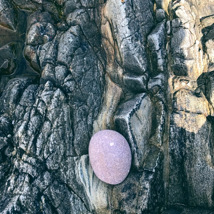 Purple Rock // Snapshot Beach C - deathysmile | ello