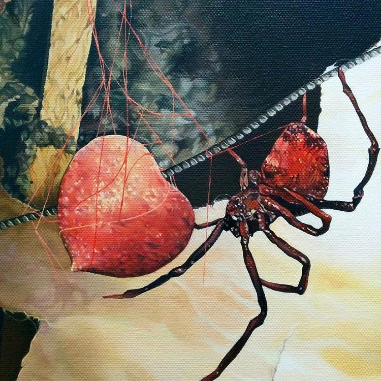 tangled red webs - spider, redback - enelojial | ello