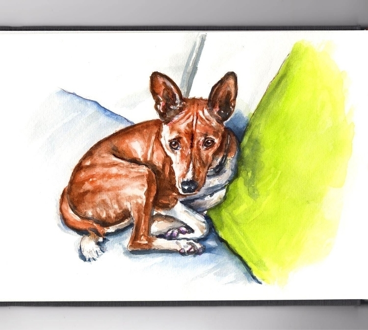 - Day 10 Favorite Pet - WorldWatercolorGroup - doodlewash | ello