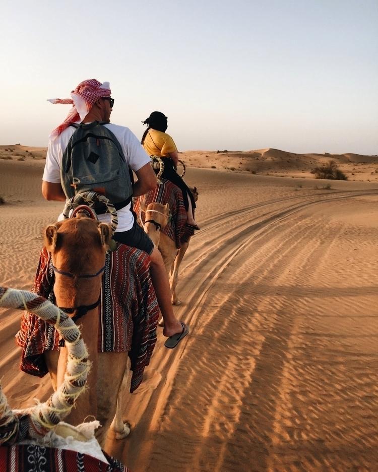 Desert isolation - dubai, desert - elicottrell | ello