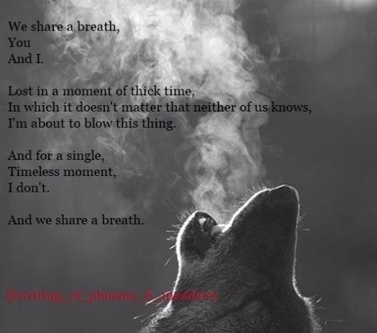 *sifts fist full poems* Shared  - phoenixbmeadows | ello