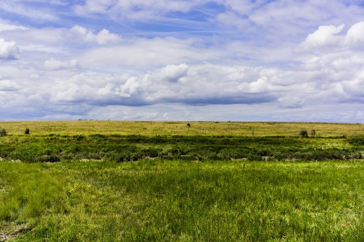 landscape. Essex. England 2017 - notabene | ello