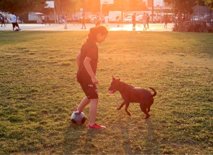 play park - child, puppy, soccer - cs8shoots | ello
