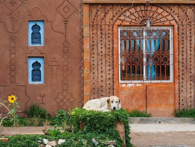 Dades, Morocco, 2016 - ta_mara | ello