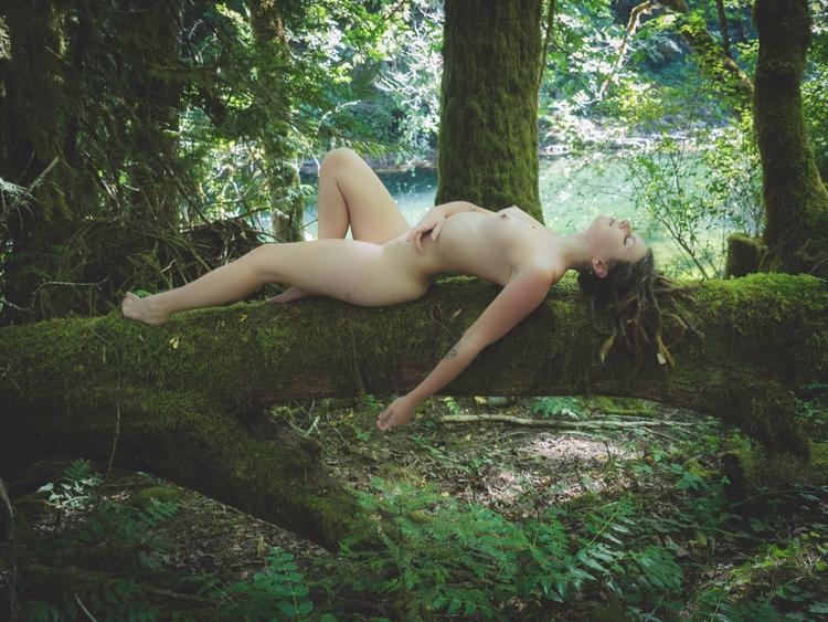 Photo courtesy - nature, forest - f-delancey | ello