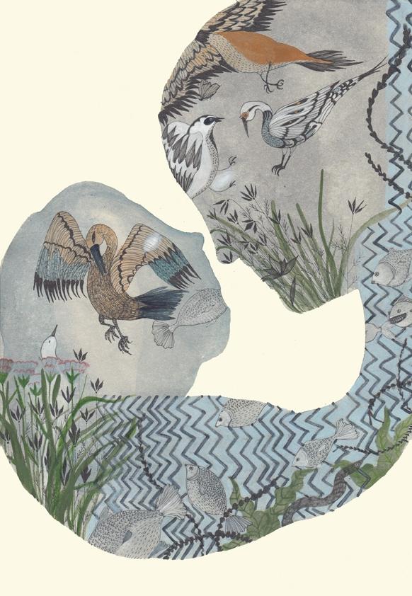 illustrations paper mixed media - spoto | ello