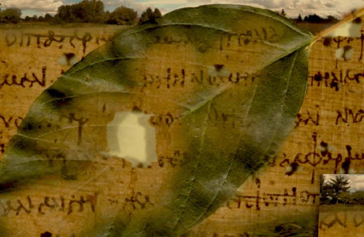 Landscape Early Writing scroll  - hesiod | ello