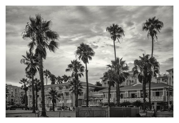 Sta. Mónica Beach, CA. USA - guillermoalvarez | ello