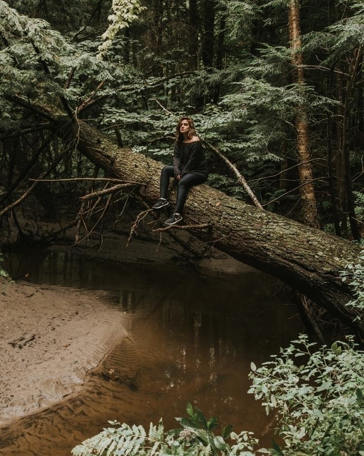 big tree | - photography, trees - charles_collin | ello
