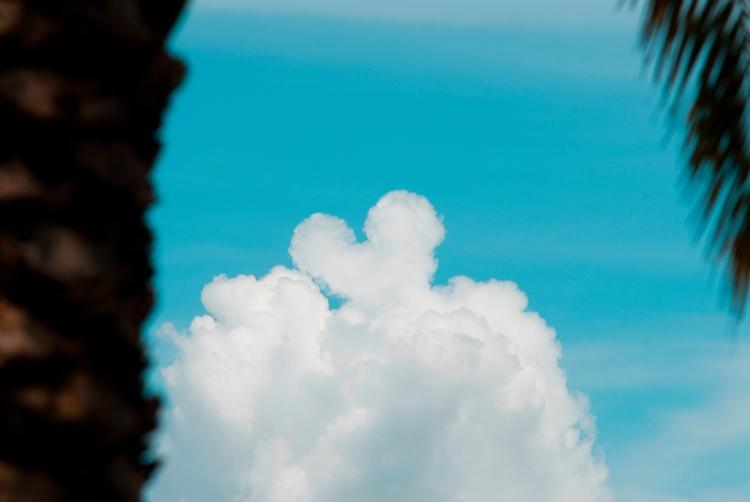 mouse code, III - Orlando, Florida - christofkessemeier | ello