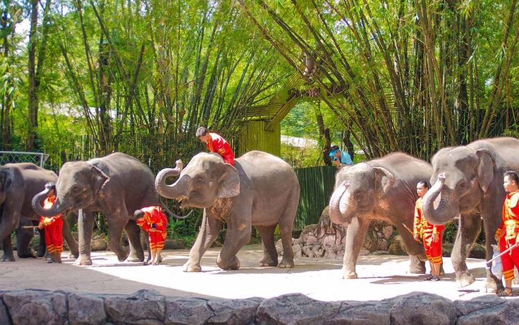 سفر به بانکوک با بازدید از دنیا - buralan | ello