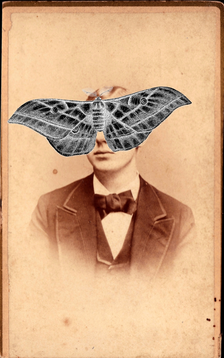 Lepidopteran Portrait (2017). D - retrocollage | ello