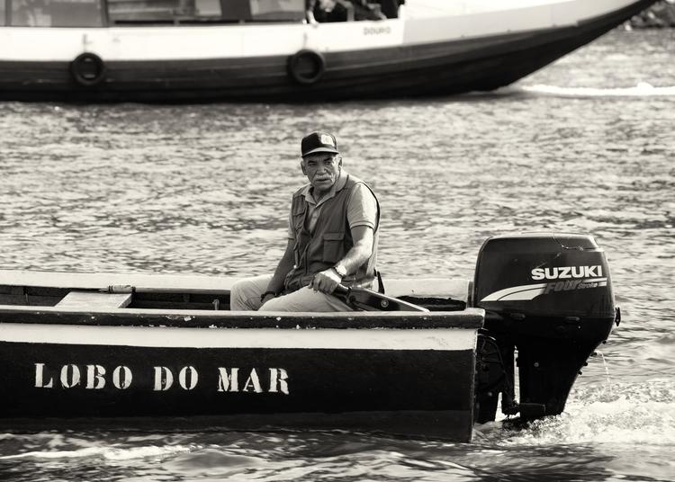 Lobo Mar - blackandwhite, porto - ryanopaz | ello