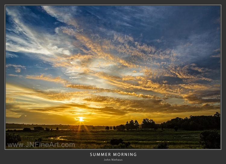 Summer Morning. arrived locatio - armadillo7 | ello