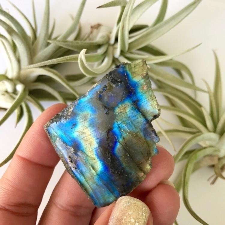 Labradorite favorite crystals.  - salthippy | ello
