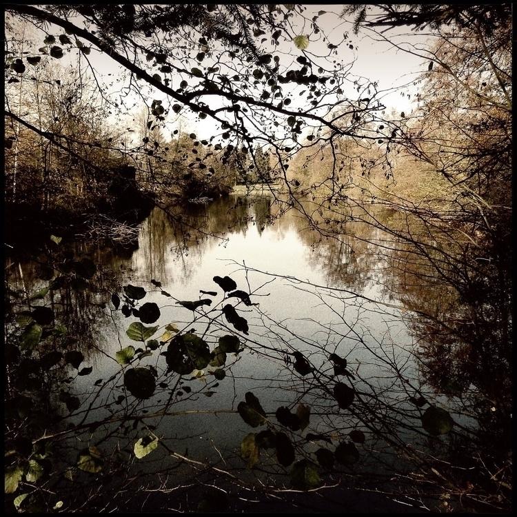 Simon walk countryside - 56. - danhayon | ello