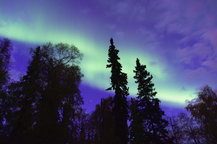 Aurora Twilight night. Fairbank - lwpetersen | ello