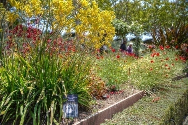 Unbreakable Lovely garden Getty - ellomaggie | ello