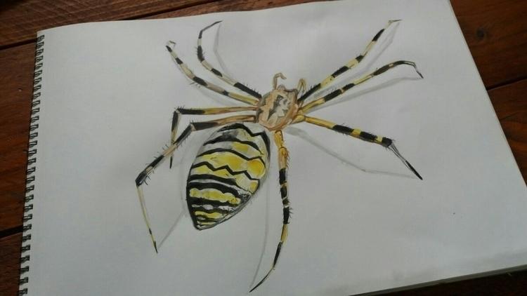 Cleoart, painting#watercolor#acrylic#3D#Spider - cleoart | ello