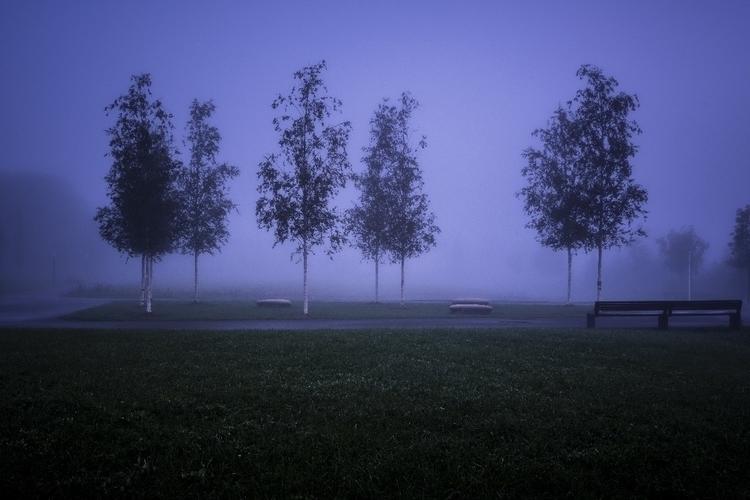 Foggy morning - luxembourgcity, streetphotos - cdelas | ello