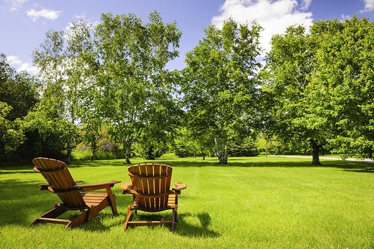 Landvision Advice Landscape Pla - davidharrisofficial | ello
