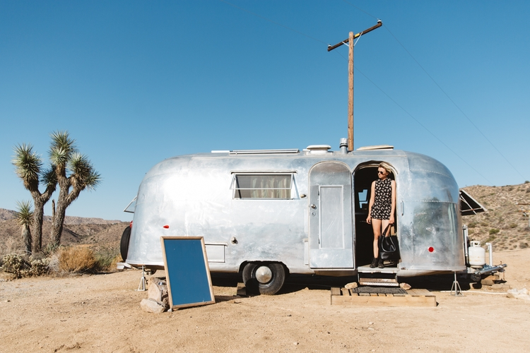 Joshua Tree - lauraaustin, photography - lauraaustin | ello