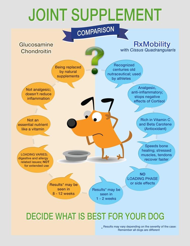 Choosing supplement dog headach - rxmobility | ello