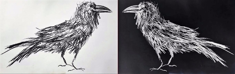 2 Crows, digital image charcoal - janeart | ello