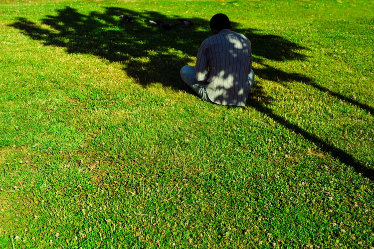 Green - photography, street, sun - manoskapa   ello