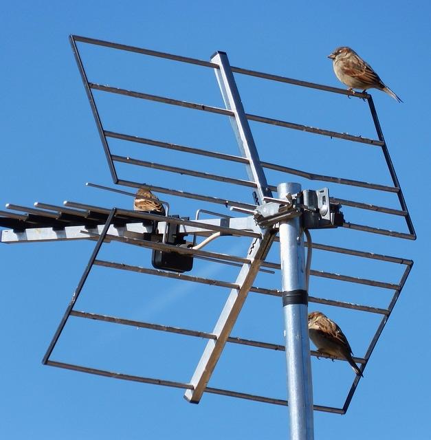 La tecnología digital hace camb - antenistmadrid | ello
