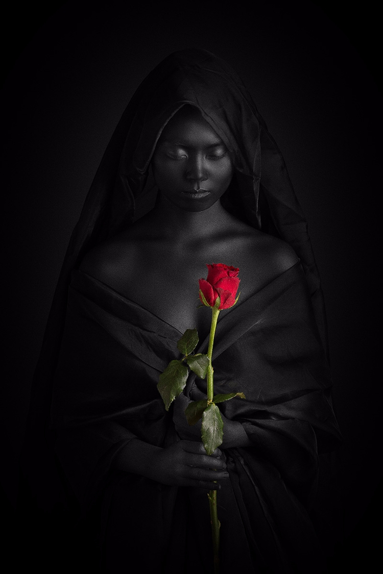 "Rose Paracelsus"" — Photographer - darkbeautymag | ello"